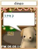 Pet_12
